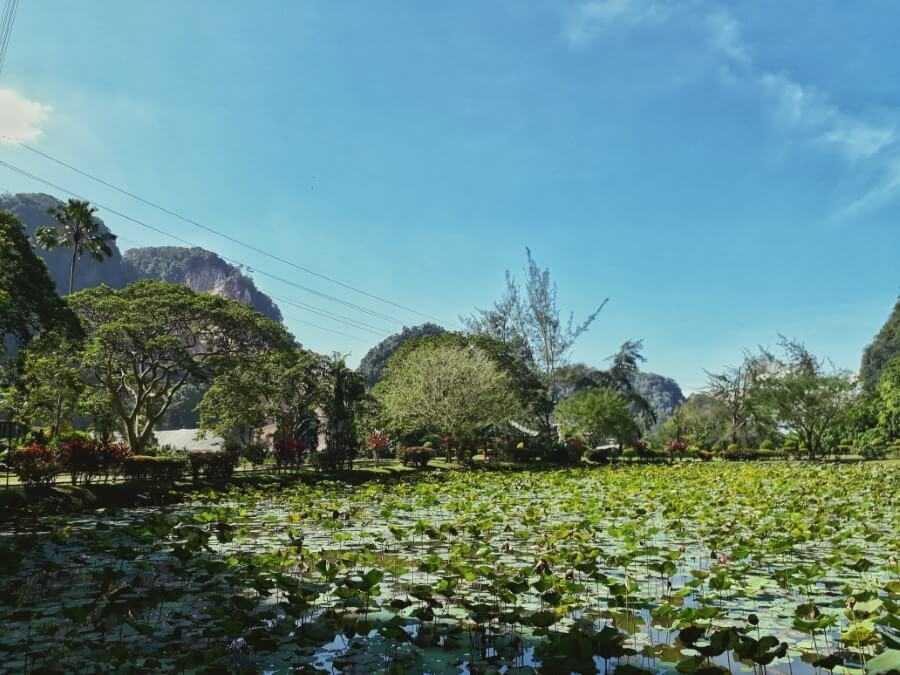 Lake at Kek Lok Tong