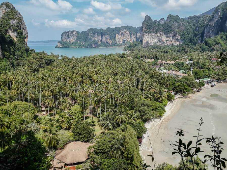 View of palm trees and ocean at Railay East viewpoint