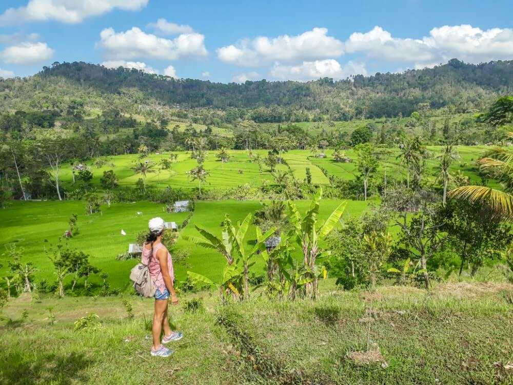 The Best Rice Fields In Bali