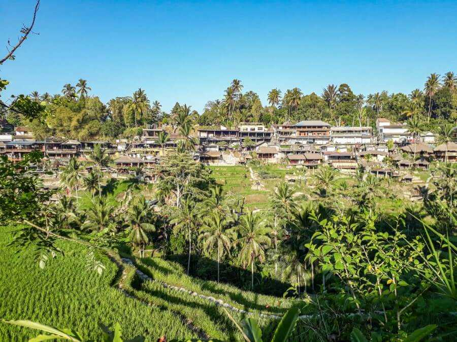 Tegalalang, the most popular rice terraces in Ubud, Bali
