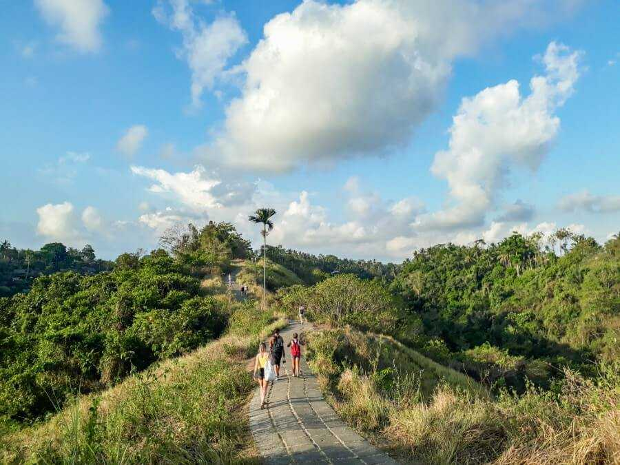 Campuhan Ridge Walk is one of the most popular rice field walks in Ubud