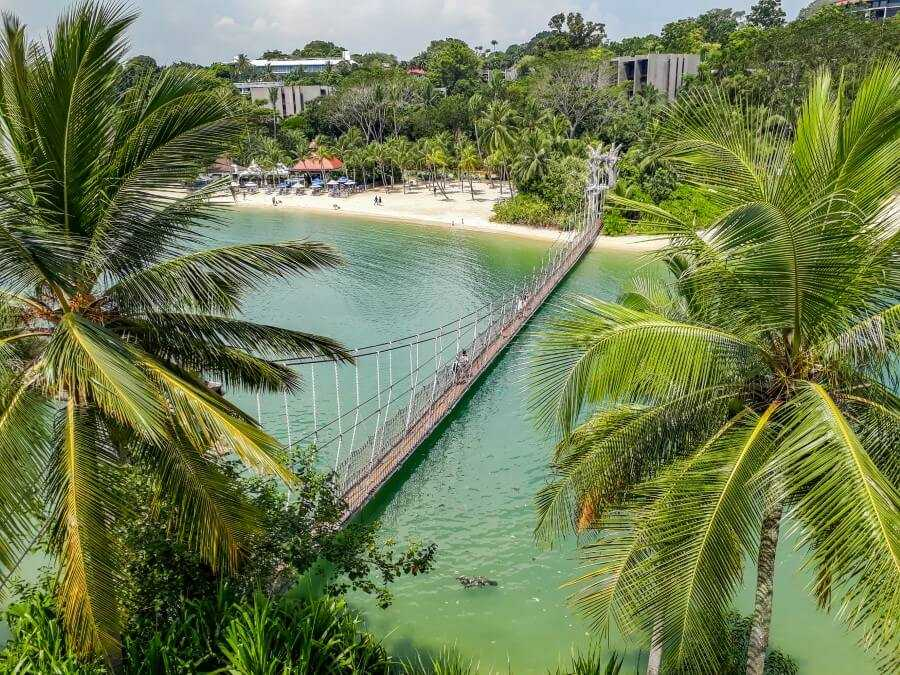 Palm trees and rope bridge on Palawan beach Singapore