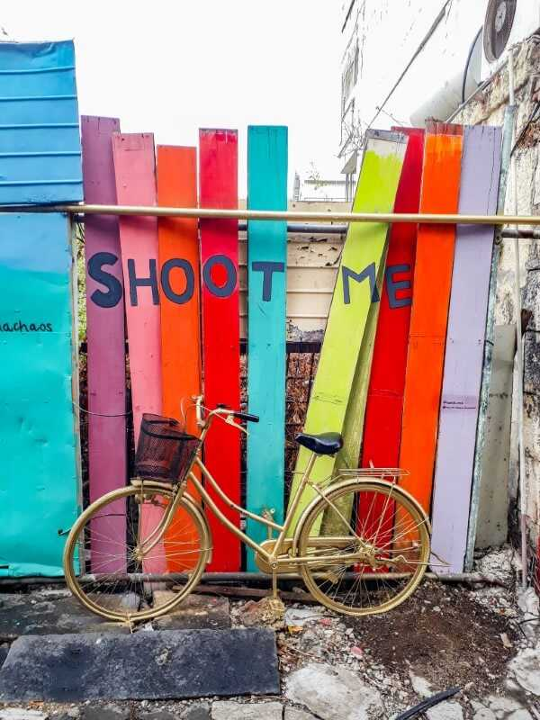 Gold bicycle mounted in front of colorful wooden boards on Dr Sun Yat Sen Street