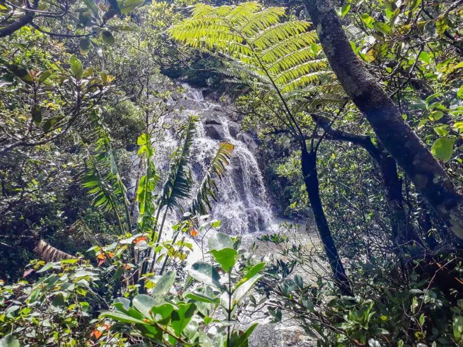 Top section of Alexandra Falls