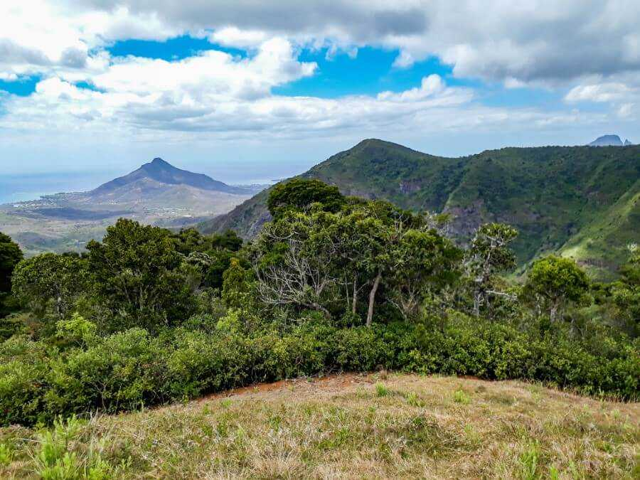 view of mountains and forest from Macchabee viewpoint Mauritius