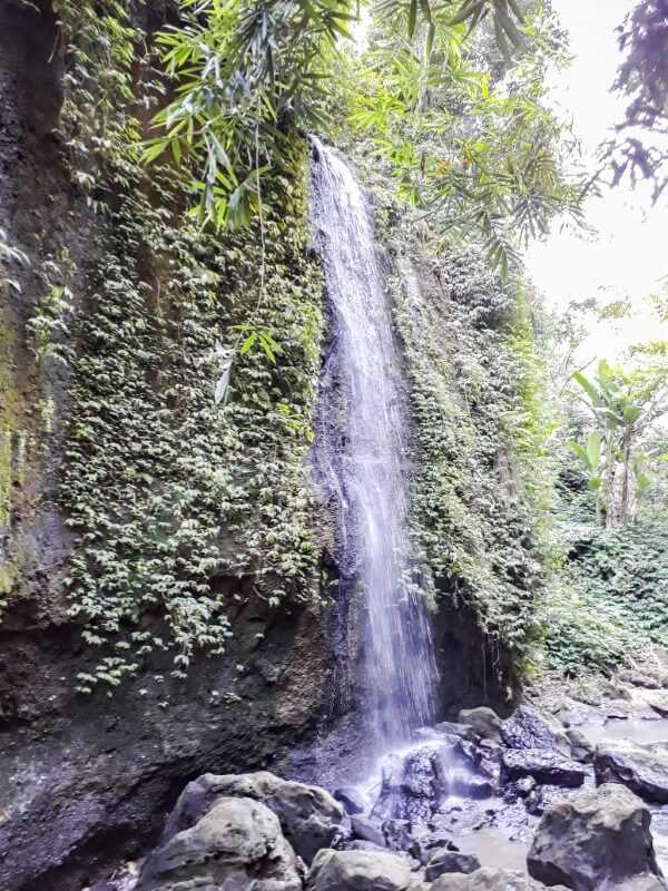 small waterfall at Tibumana Ubud