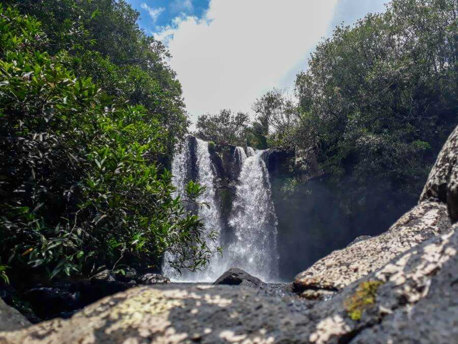 view of Leon waterfall surrounded by green vegetation