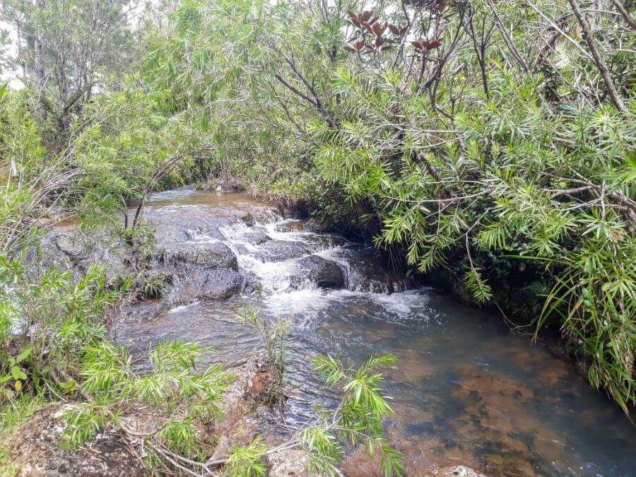 river flowing into a waterfall at Plaine Champagne Mauritius